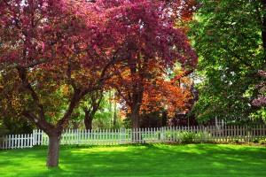 Fence installation in Autumn
