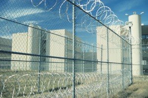 chain link fencing for commerical applications