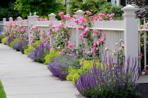 Check out these three tips for personalizing your fence.