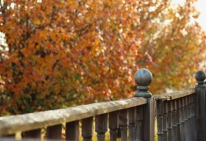 An fall fence